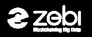 Zebi Logo